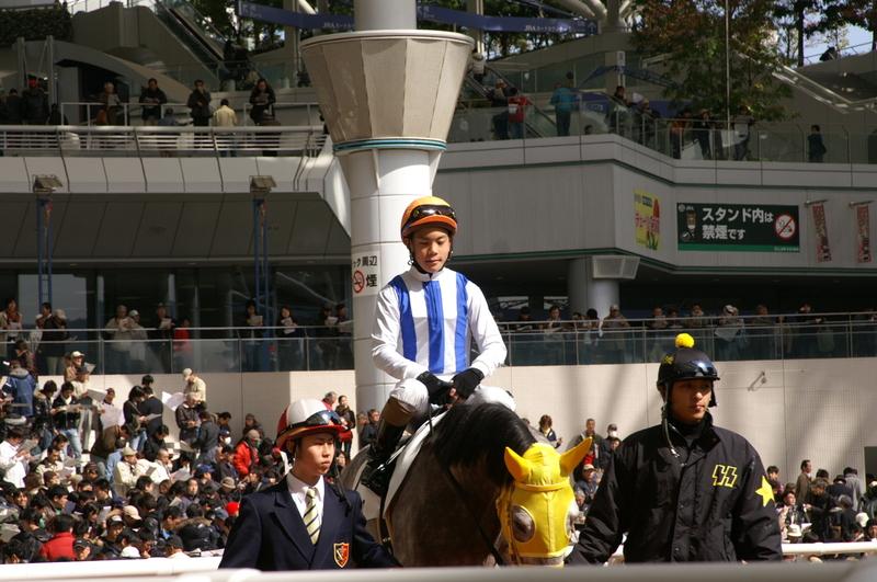 200937_yamato_banpaku_1_101