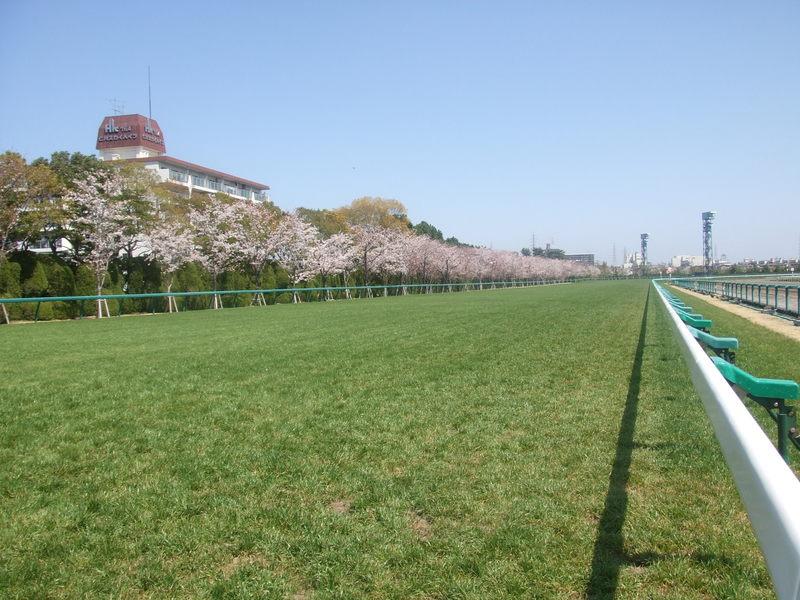 http://blog.jra.jp/photos/uncategorized/2010/04/09/photo.jpg