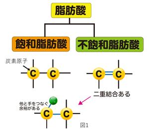 3 脂肪酸 オメガ